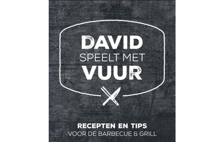 Grandhall Boek David Speelt Met Vuur